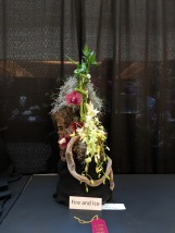 2018 Orchid Show Houston